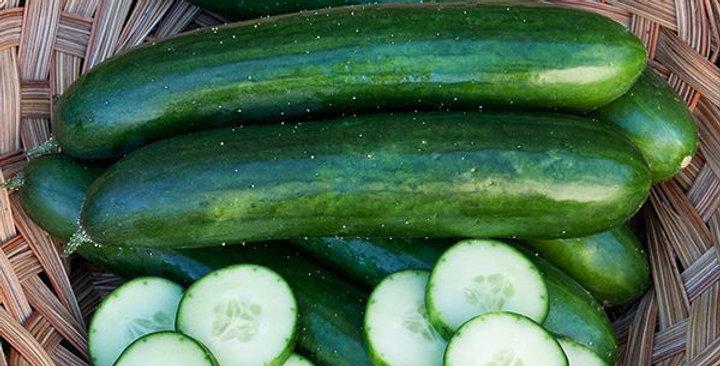 Green Finger Cucumber