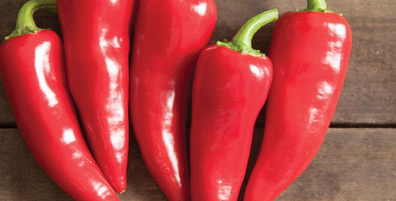 Hot Pepper- Fresno