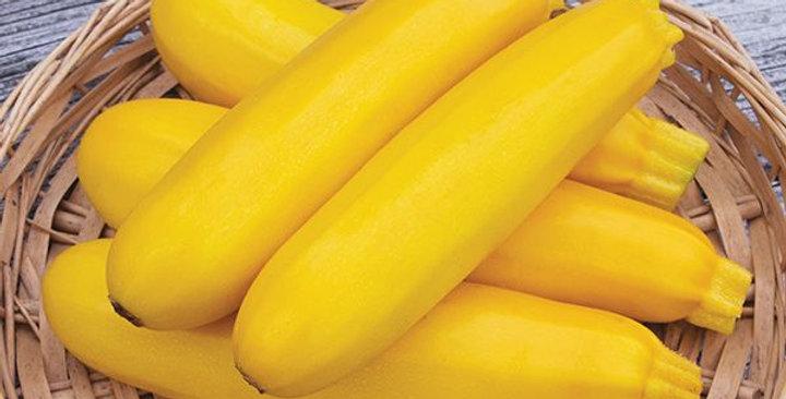 Yellow Zucchini