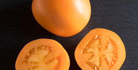 Heirloom Tomato- Valencia