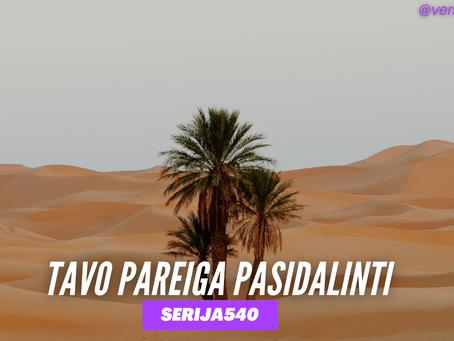 Serija #540 Dykumos nuodėmė 🐫