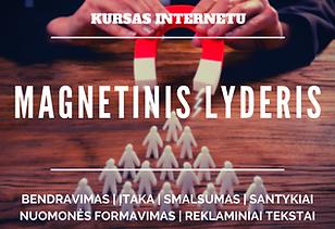 Magnetinis Lyderis.png