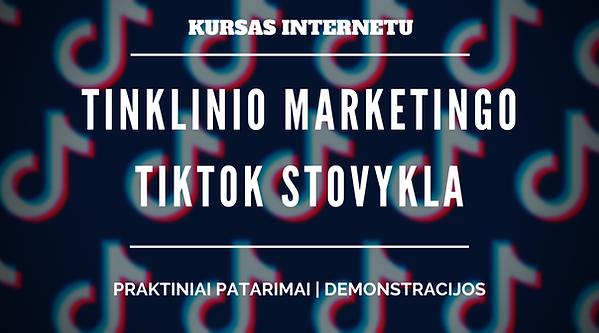 Tinklinio Marketingo TikTok Stovykla.png