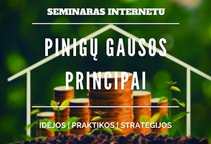 Pinigu Gausos Principai (1).png