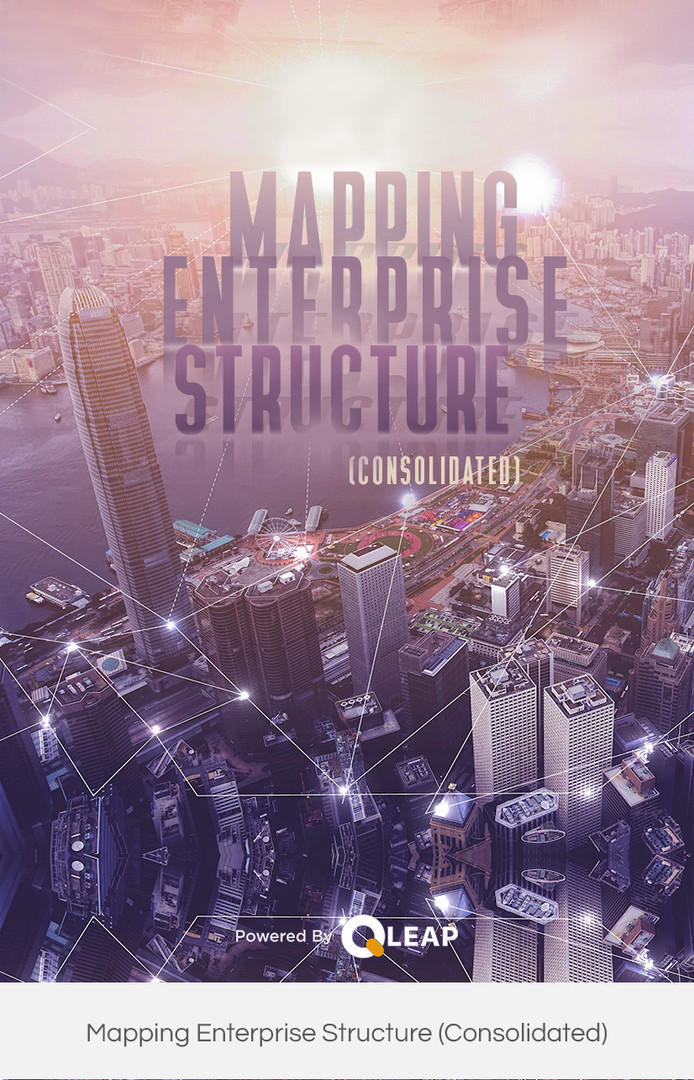 Mapping Enterprise Structure (Consolidat