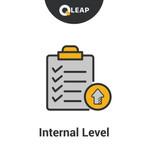 Internal Level.jpg