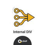 Internal DIV.jpg