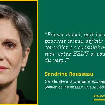"""Sandrine Rousseau: """"Votez EELV si vous voulez du vert!"""""""