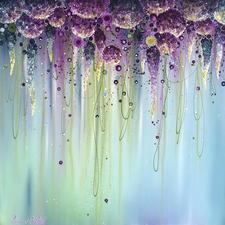 Enchanted Dream