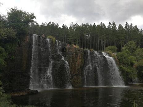 Mpumalanga-Waterfalls-Forest-Falls