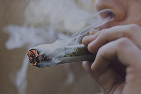 Marijuana, Dagga, Weed, Cannabis, Pot