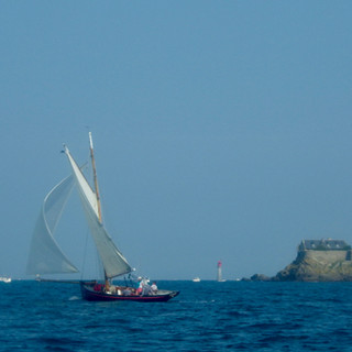 Albatros Lines Navigation
