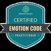 emotionscode-anwender-herford-bei-bielef