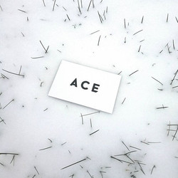 Don't let the snow stress you out. Contact ACE and get your car looking fresh again