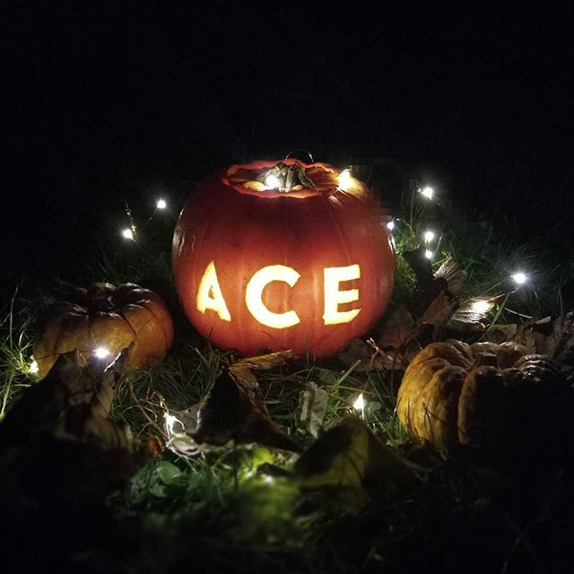 Happy Halloween from all at Ace Car Valeting