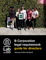 B Corp Legal Requirement - AANZ - Guide for Directors - Aotearoa NZ - Oct 2021.png