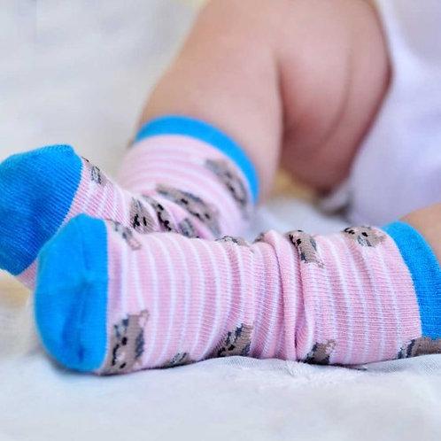 Powell Craft Cat Socks