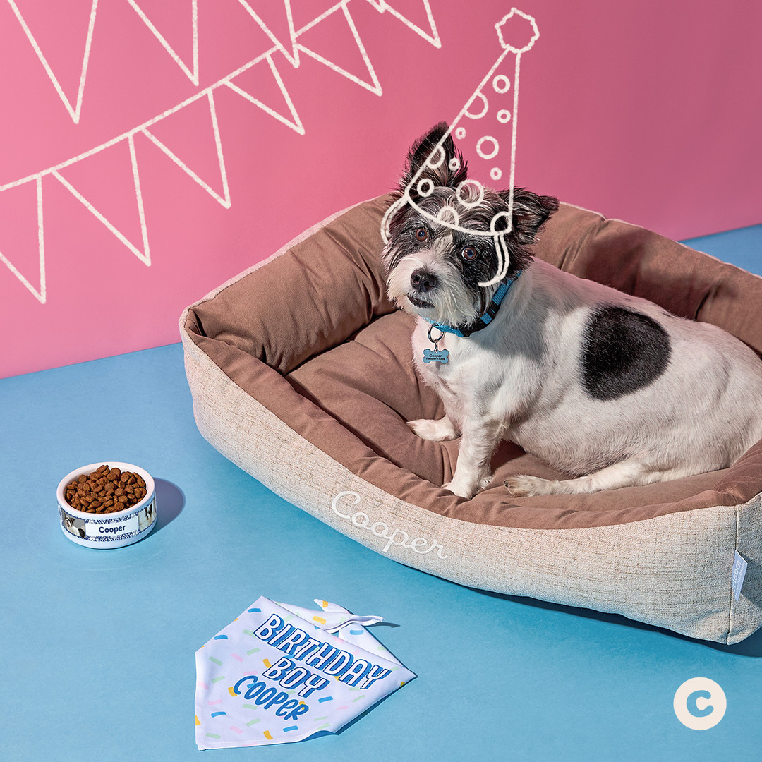 New Pet Personalization 1X1_5.jpg