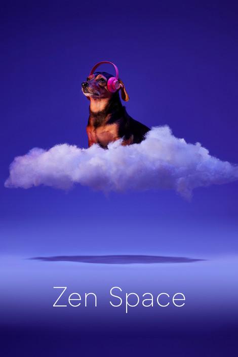 spotify zen.jpg