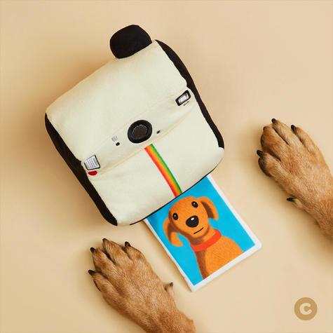 Frisco Polaroid - IG 1.jpg