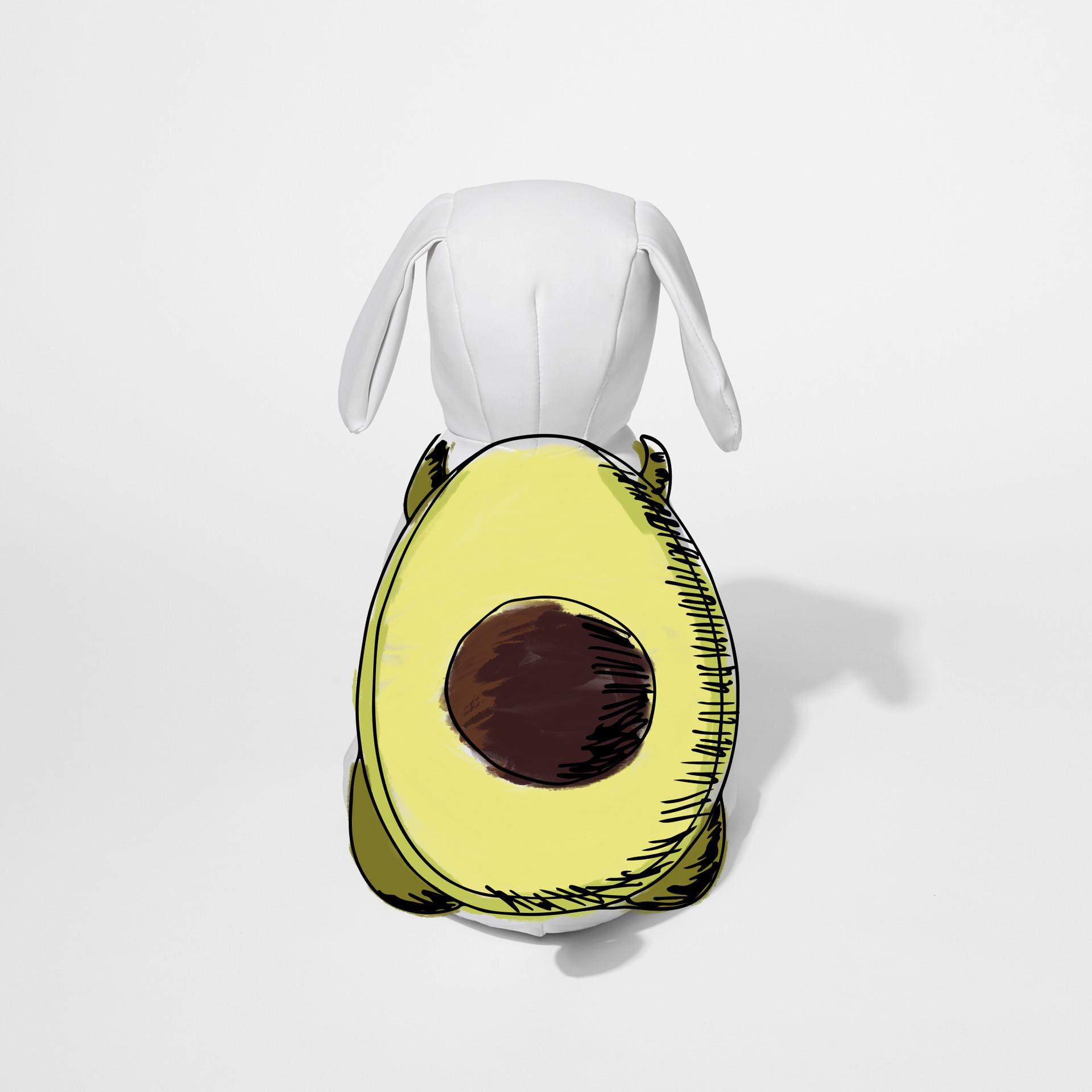 lookbook Avocado.jpg