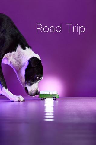 spotify road trip.jpg