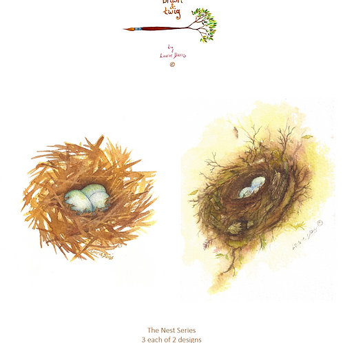"""The Nest Series"" - 6 Watercolor Art Card Set"