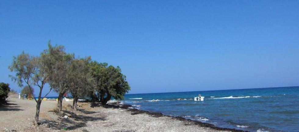 fanes_beach_1jpg