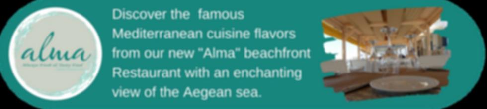 Alma restaurant banner.png