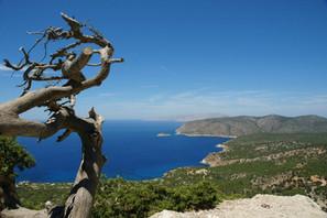 View-from-hillside-at-Rhodes.jpg