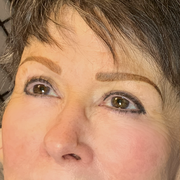 Hybrid Brows & old eyeliner color boosted with a smokey look to help it fade nicer in the future.