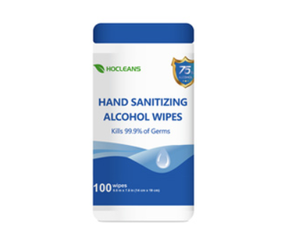 HOCleans Ethyl Alcohol Wipes (100 Pcs)