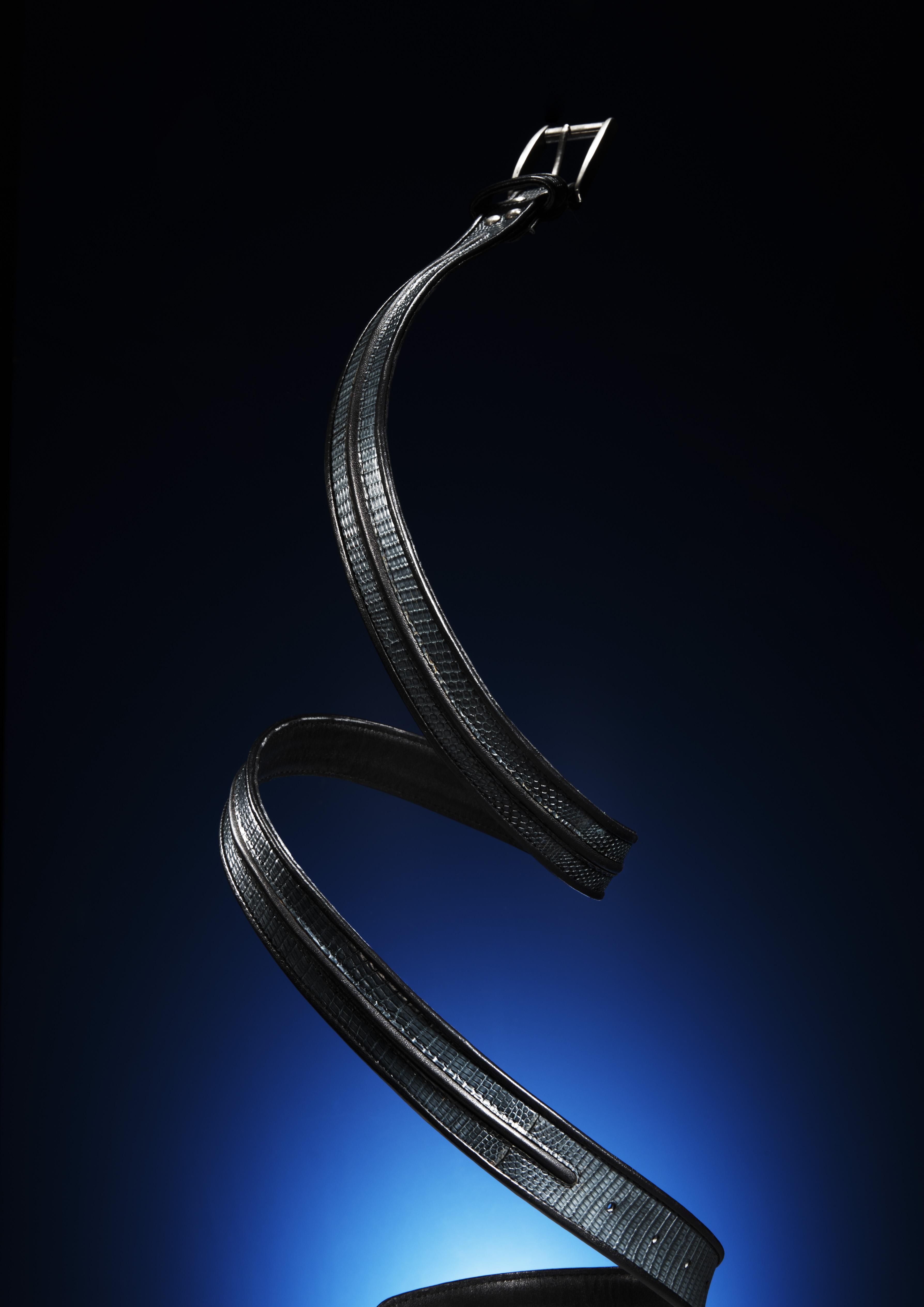 Kohshin Satoh Belt