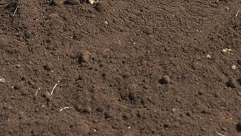 topsoil_edited.jpg