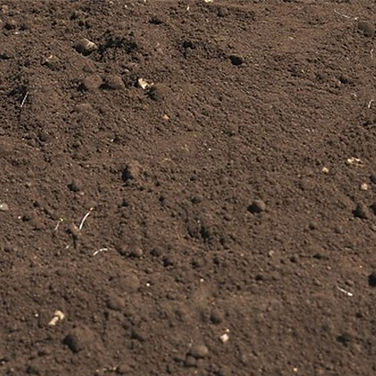 topsoil braintree