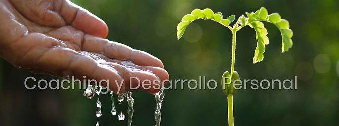 COACHING Y DESARROLLO PEROSNAL.jpg
