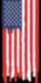 american-flag-3001893_960_720.png