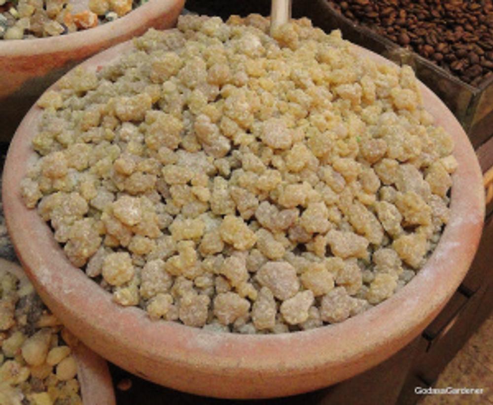 Myrrh, Old City Jerusalem Market - Copy