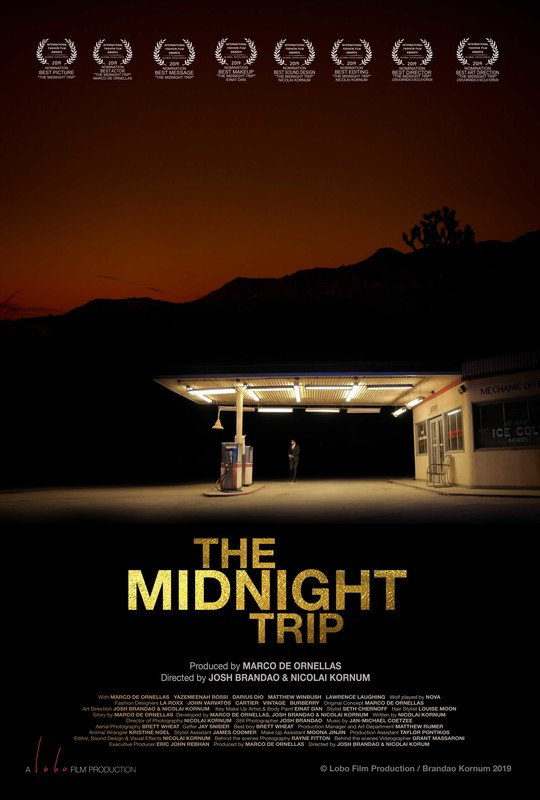 The Midnight Trip