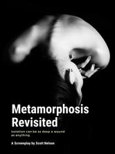 Metamorphosis Revisited
