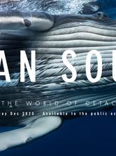 ocean-souls.png