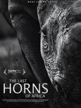 the-last-horns-of-africa.jpeg