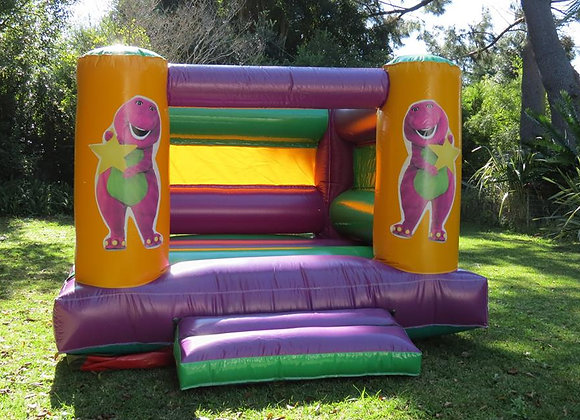 Mini Barney  Jumping Castle Hire | Cape Town | Paula's Party Stuff
