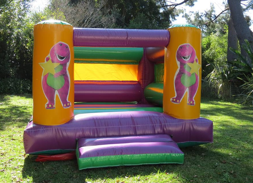 Remarkable Mini Barney Jumping Castle Hire Cape Town Paulas Party Stuff Download Free Architecture Designs Boapuretrmadebymaigaardcom