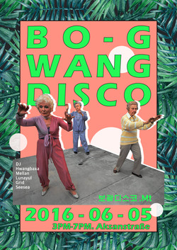 BOGWANG DISCO