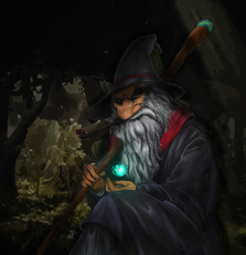 Wizard in the Woods