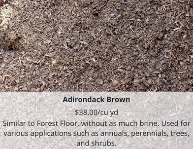 Adirondack Brown (1).png