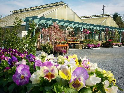 Veggie barn pictures 015-2.jpg