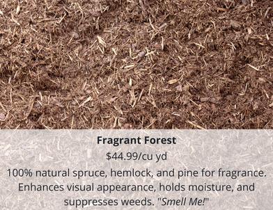 Fragrant Forest.png
