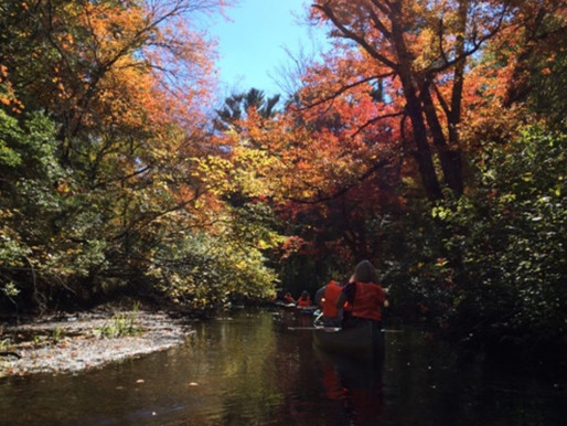 Wood-Pawcatuck River System Now Wild and Scenic